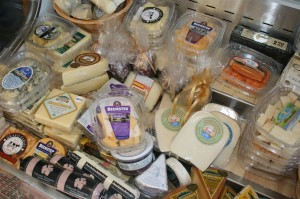 Cheese selection from Vivant