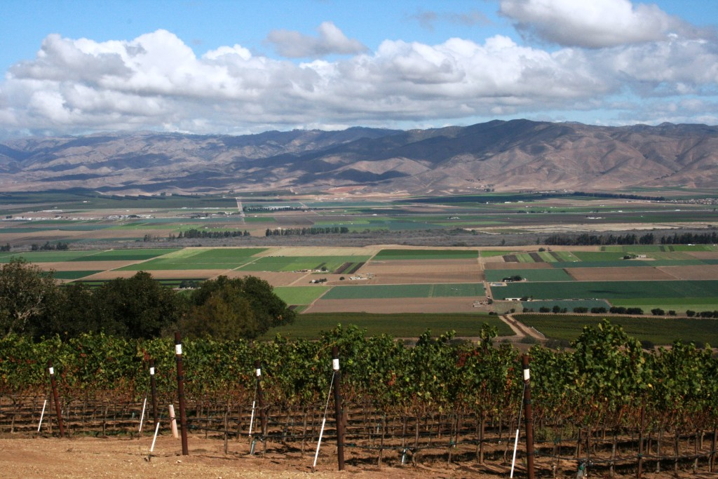view of the Salinas Valley from Hahn Family Wines